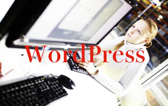私の初めてのWordPress制作・・・。